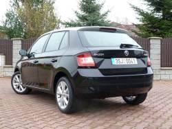 Škoda Fabia (test 2014)1